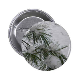 Snow Covered Pine Needles Button
