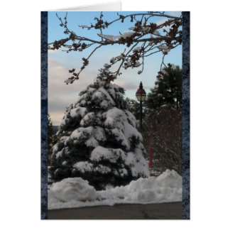 Snow covered pine tree and lampost card