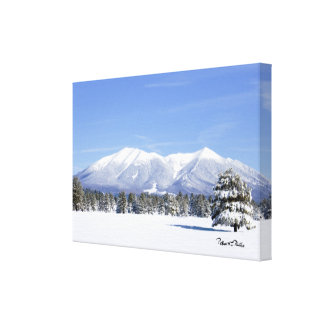 Snow Covered Prairie and San Francisco Peaks Canvas Print