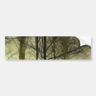 Snow Covered Trees Bumper Sticker