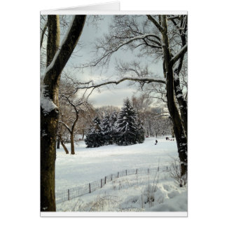 Snow Covered Trees in Central Park Card
