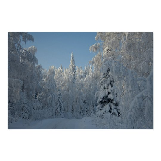 Snow covered trees poster