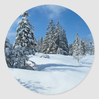Snow-Covered Trees, Winter Scene Classic Round Sticker