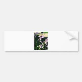 Snow drops bumper sticker