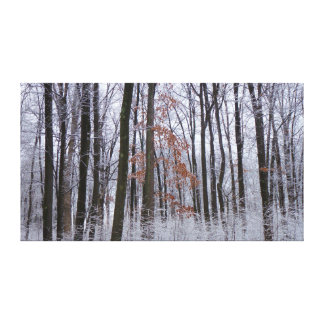 Snow Dusted Forest Winter Landscape Photography Canvas Print