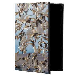 Snow Geese Fill The Sky After Feeding In Barley iPad Air Case