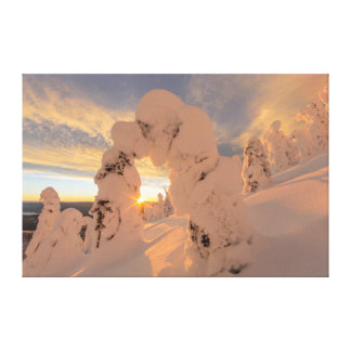 Snow Ghosts In The Whitefish Range Canvas Print