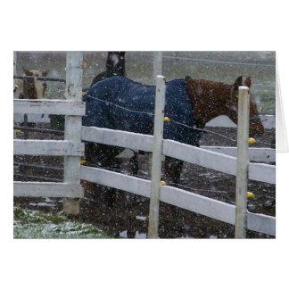 Snow Horses Card