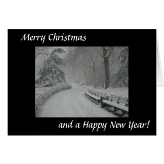 Snow in Central Park Card