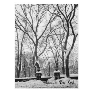 Snow in New York Postcard