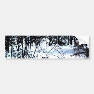 Snow In The Woods Bumper Sticker