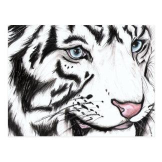 Snow Leopard 2 Postcard