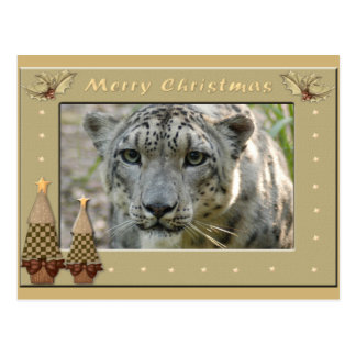 Snow Leopard-BCR-c-158 copy Postcard