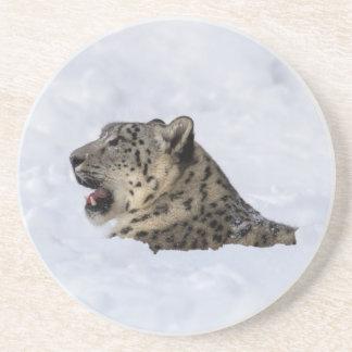 Snow Leopard Buried in Snow Beverage Coaster