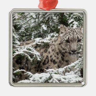 Snow Leopard Cub Hiding Metal Ornament