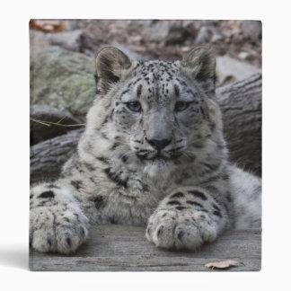 Snow Leopard Cub Sitting Binders