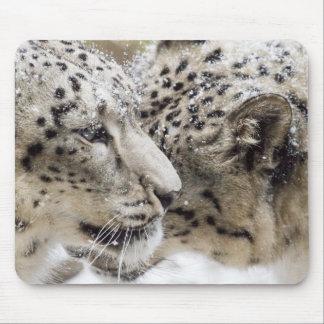 Snow Leopard Cuddle Mouse Pad