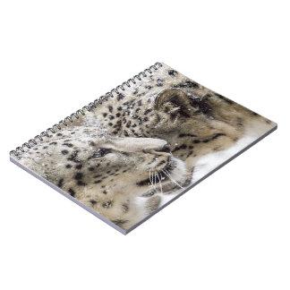 Snow Leopard Cuddle Spiral Notebook