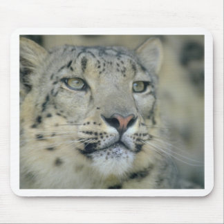 snow leopard mouse pad
