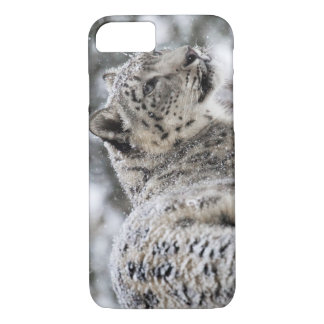 Snow Leopard Snow Portrait iPhone 7 Case