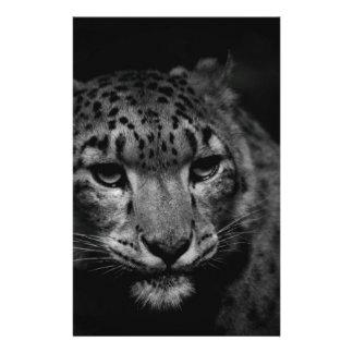 snow-leopard stationery