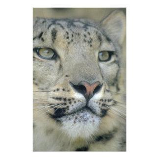 snow leopard stationery
