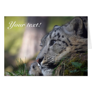 Snow Leopard Thank You Card