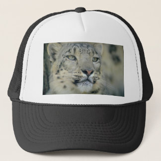 snow leopard trucker hat