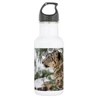 Snow Leopard Under Snowy Bush