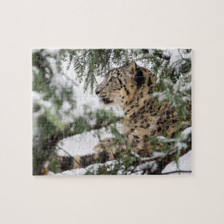 Snow Leopard Under Snowy Bush Jigsaw Puzzle