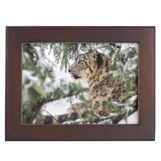 Snow Leopard Under Snowy Bush Keepsake Box