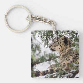 Snow Leopard Under Snowy Bush Keychain