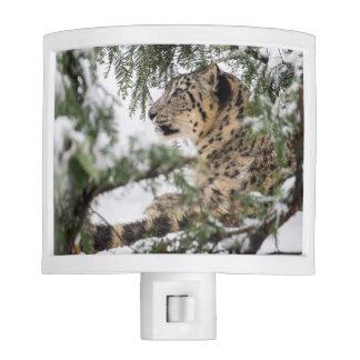 Snow Leopard Under Snowy Bush Nite Lights