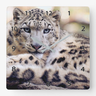 Snow Leopard Wildlife Wall Clock