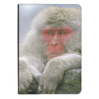 Snow Monkey Couple, Japanese Macaque, Kindle 4 Case