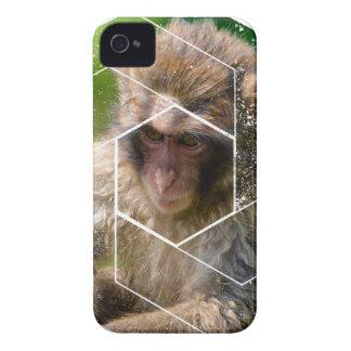 Snow Monkey iPhone 4 Case-Mate Case