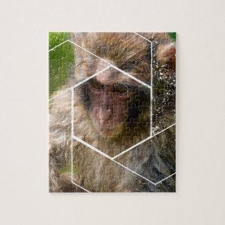 Snow Monkey Jigsaw Puzzle