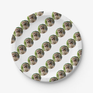 Snow Monkey Paper Plate
