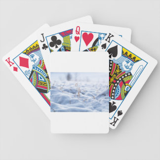 Snow on a meadow in winter macro bicycle playing cards