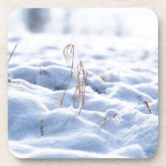 Snow on a meadow in winter macro coaster