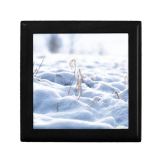 Snow on a meadow in winter macro gift box