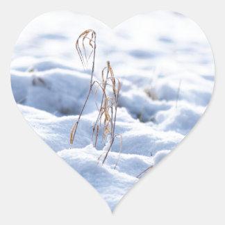 Snow on a meadow in winter macro heart sticker