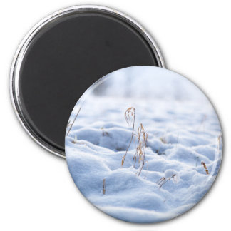 Snow on a meadow in winter macro magnet