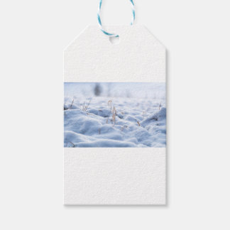 Snow on a meadow in winter macro pack of gift tags