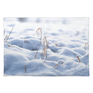 Snow on a meadow in winter macro placemat