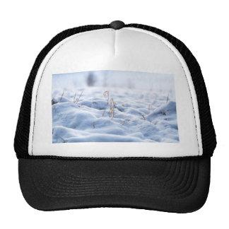 Snow on a meadow in winter macro trucker hat