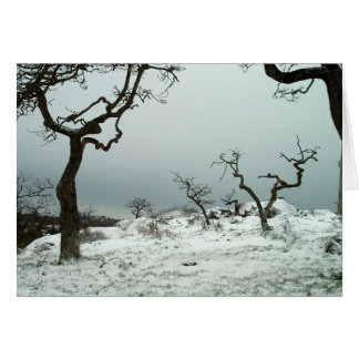 Snow on Garry Oak Meadow Card