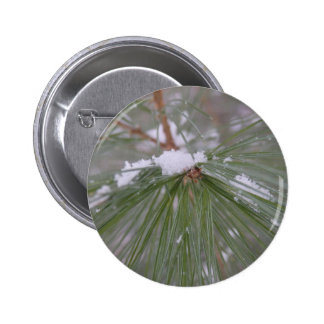 Snow on the Pine Needles Pinback Buttons
