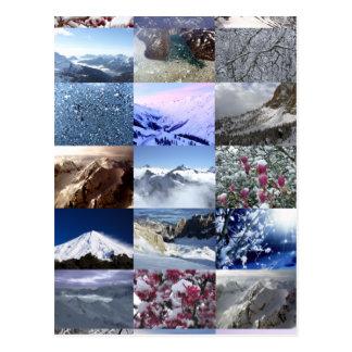 Snow Photo Collage Postcard