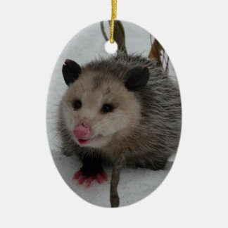 Snow Possum Ceramic Oval Ornament